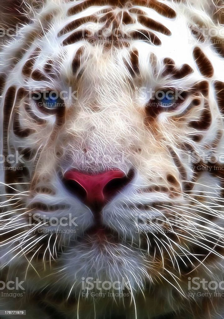 Fractal White Tiger With Blue Eyes royalty-free stock photo