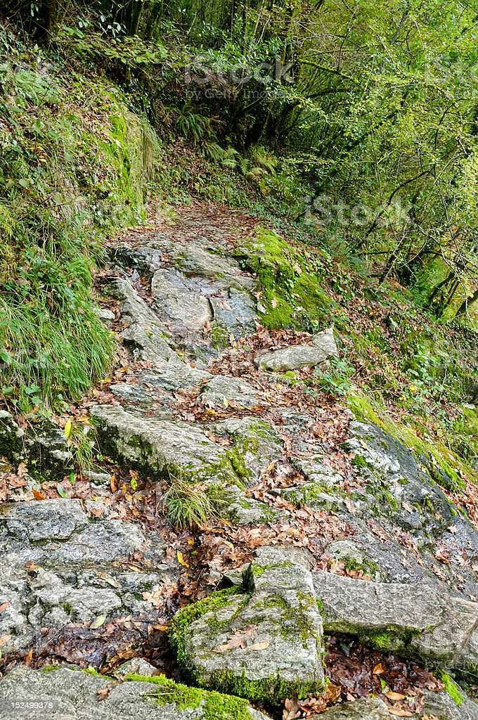 Fragas of the River Eume - National Park royalty-free stock photo