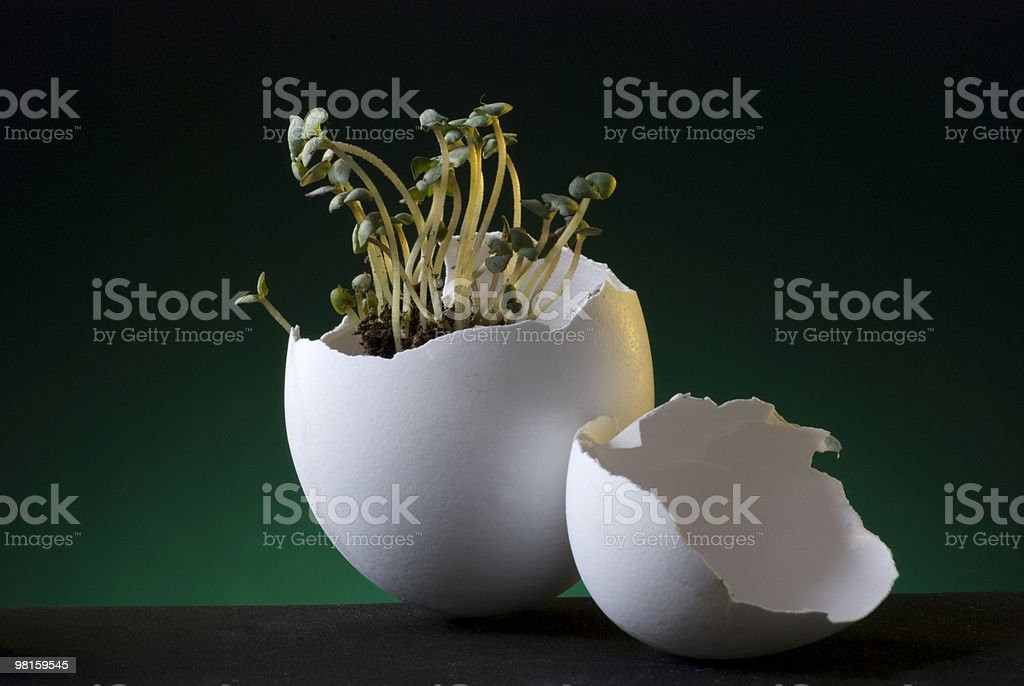 Fragile Green Earth stock photo