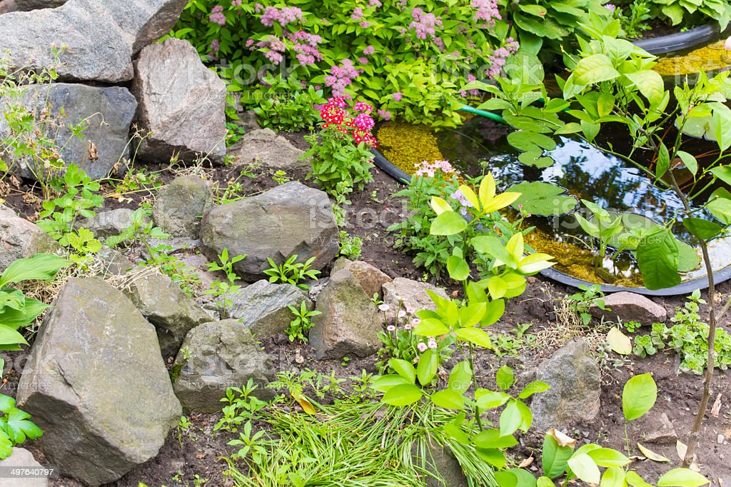 fragment garden with an artificial pond stock photo