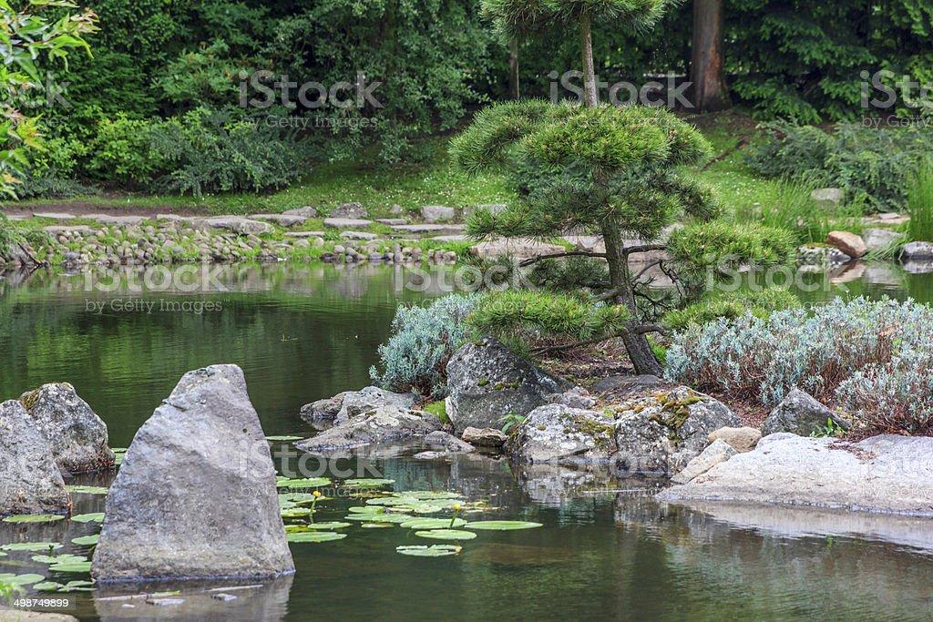 Fragment of a japanese garden stock photo