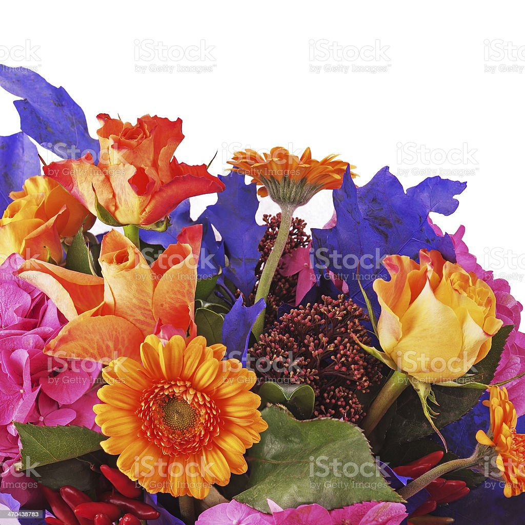 Fragment of bouquet from flowers isolated on white background. royalty-free stock photo