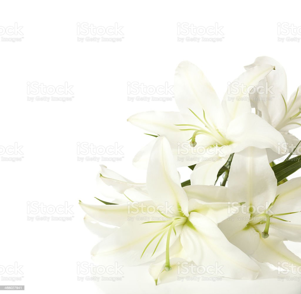 fragment of white lilies ' bunch stock photo