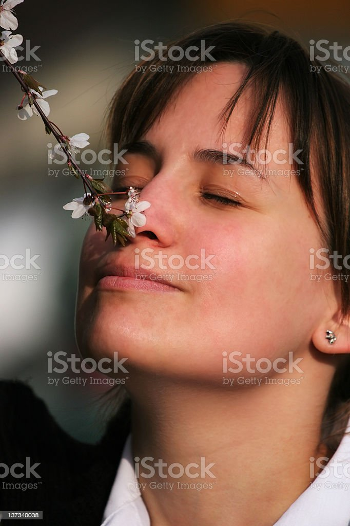 Fragrance royalty-free stock photo