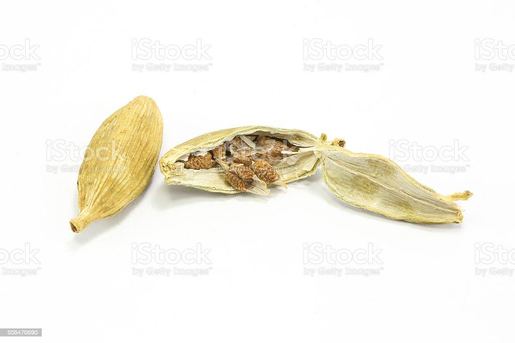 Fragrant Cardamom spice stock photo