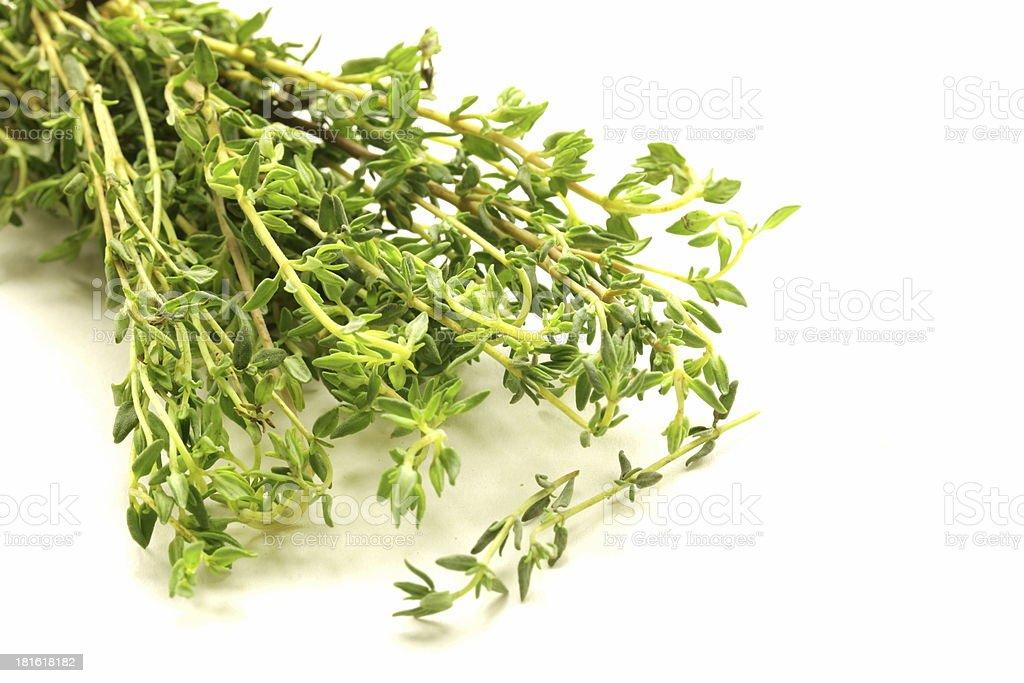 fragrant fresh green thyme on  white background royalty-free stock photo