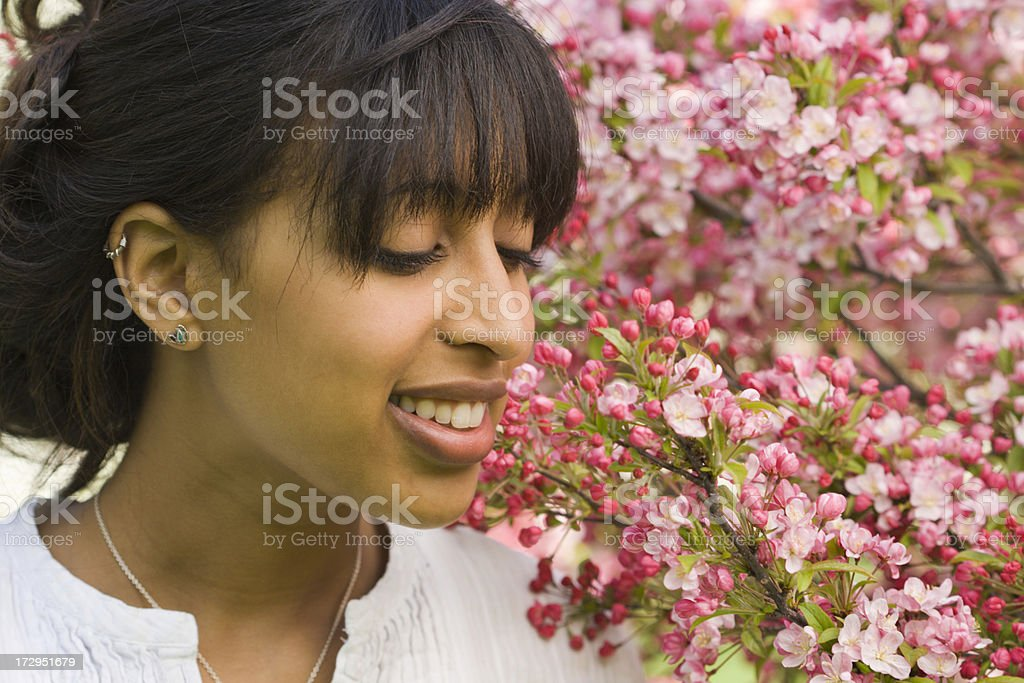 Fragrant of Blossoms royalty-free stock photo