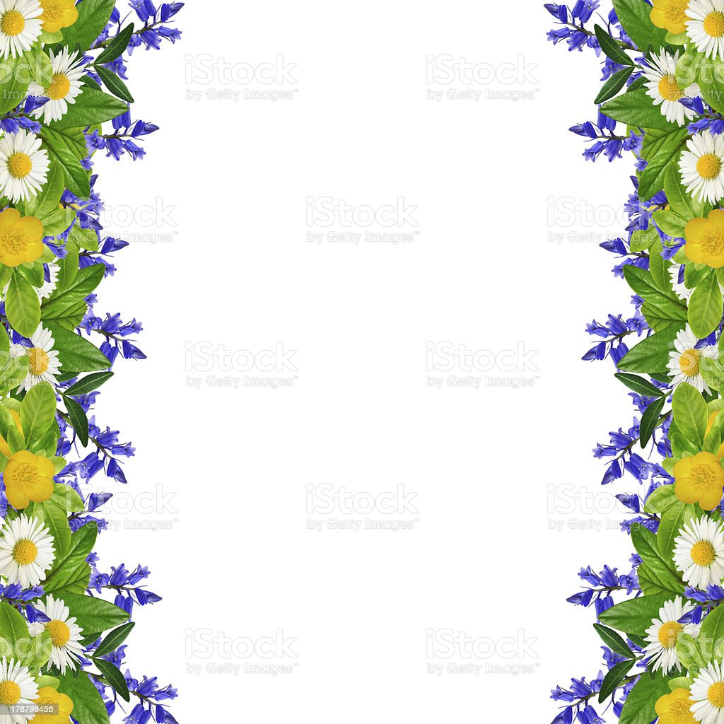 Frame: different colorful flowers royalty-free stock photo