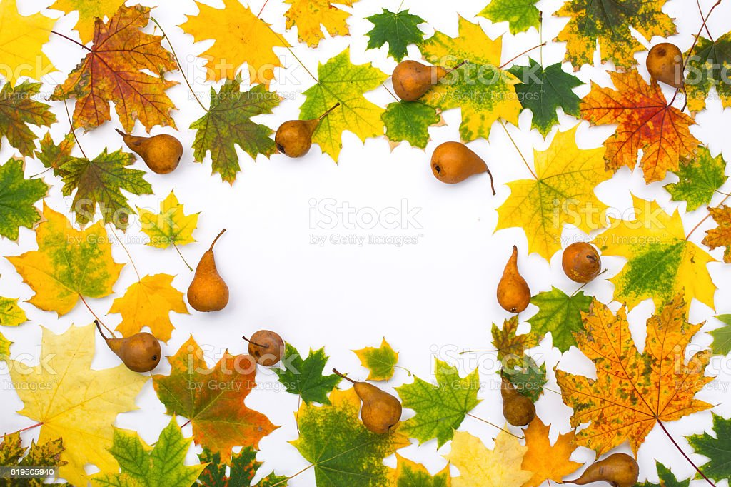 Frame from autumn leaves with pears on white background stock photo