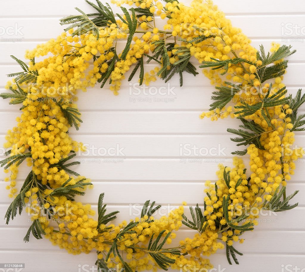 Frame from mimosa flower on wooden table stock photo