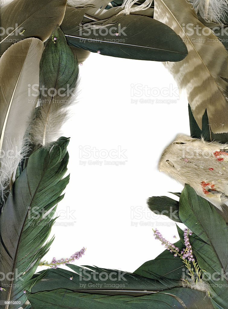 Frame from raven feathers royalty-free stock photo