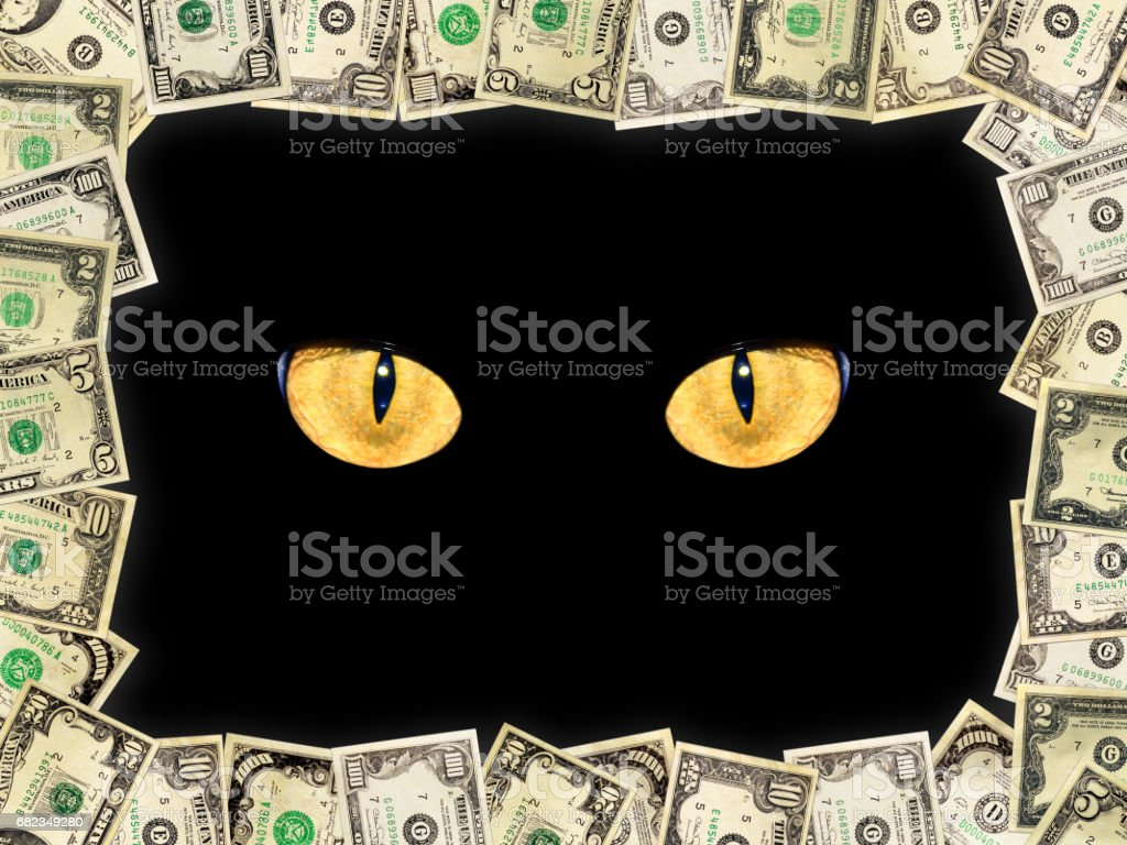 Frame from the dollars and intent cat's eyes stock photo