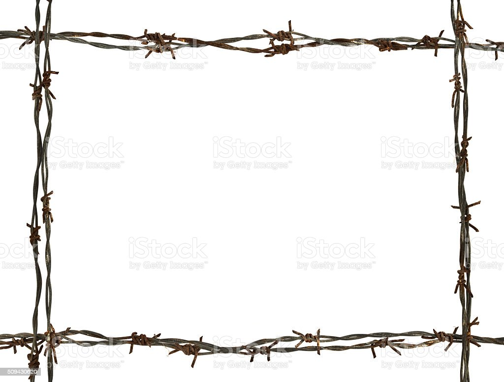 frame made of barbed wire stock photo