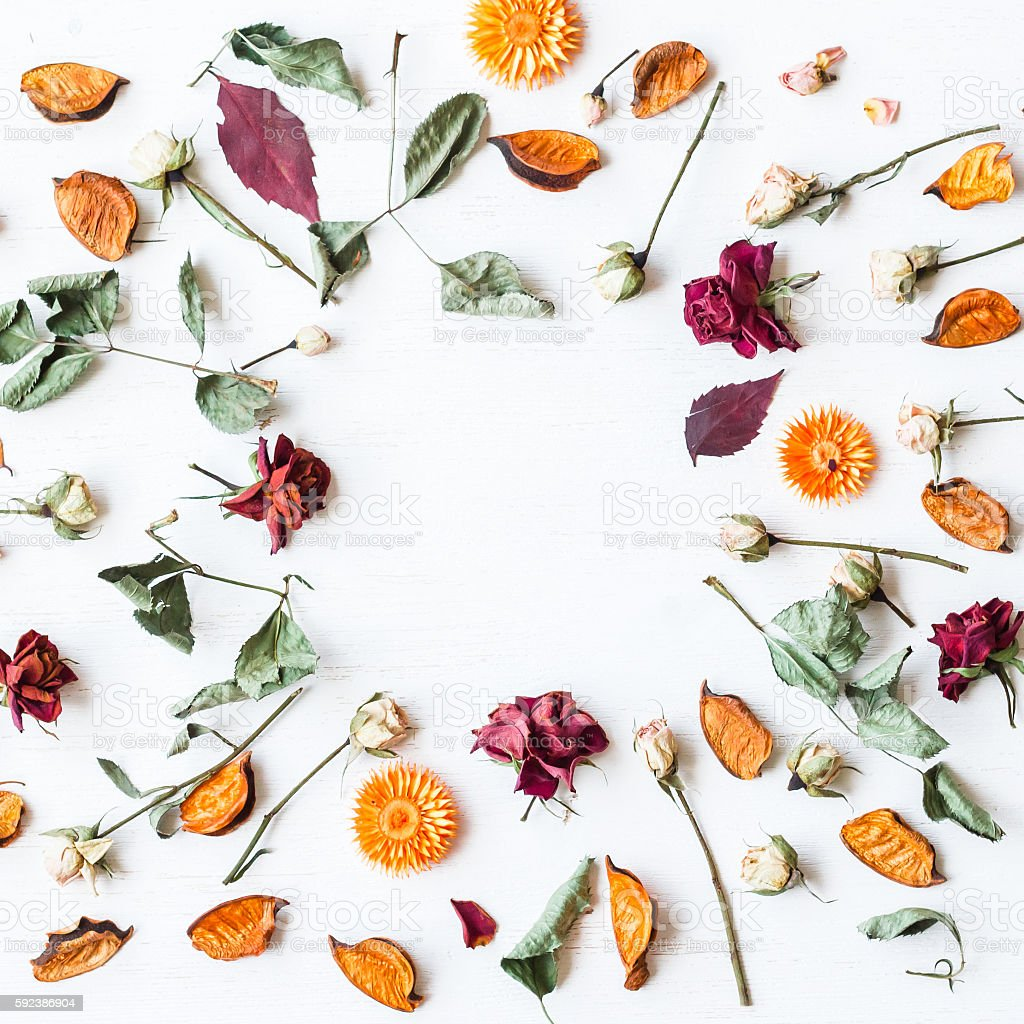 frame made of dried flowers and autumn leaves, flat lay stock photo