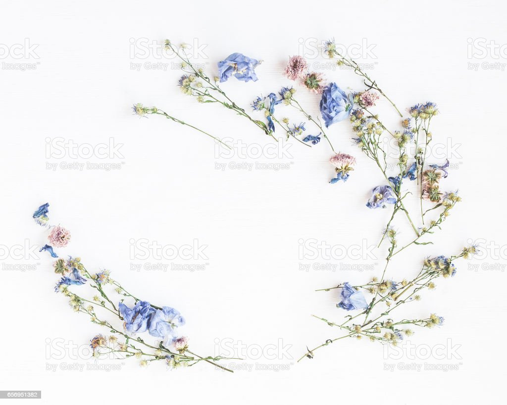Frame made of dried flowers on white background stock photo