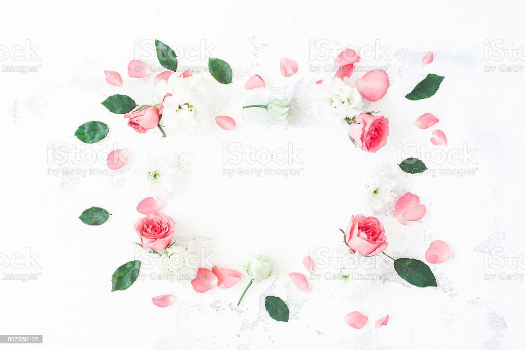 Frame made of rose flowers on white background. Flat lay stock photo