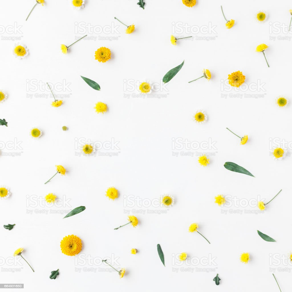 Flowers composition. Frame made of yellow flowers on white...