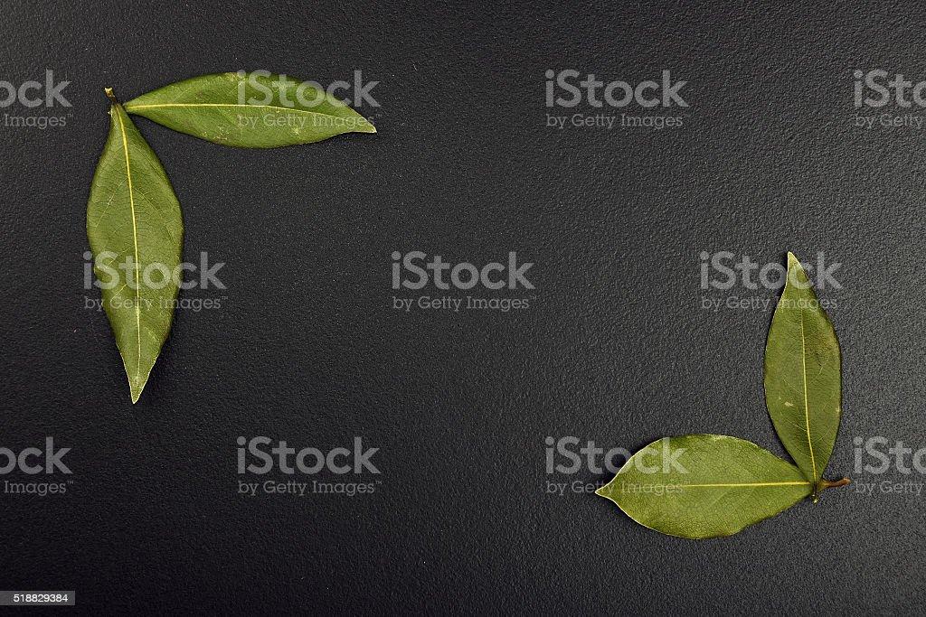 Frame of bay leaves on black chalkboard royalty-free stock photo