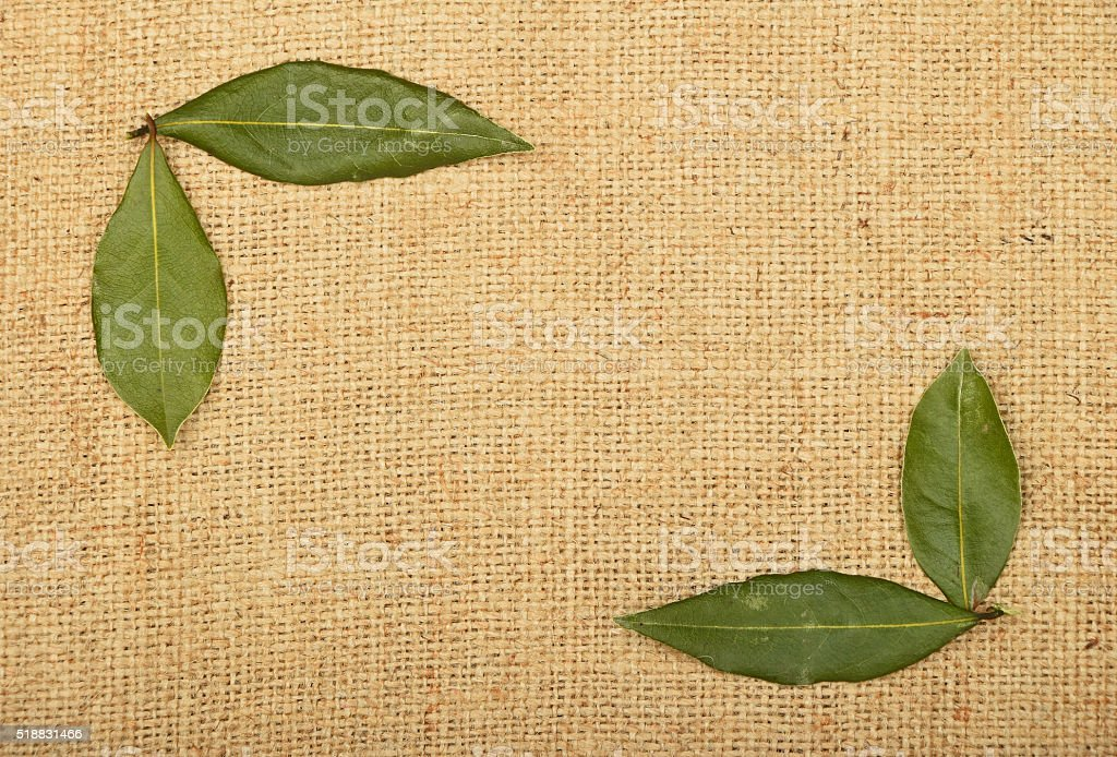 Frame of bay leaves on burlap jute canvas royalty-free stock photo