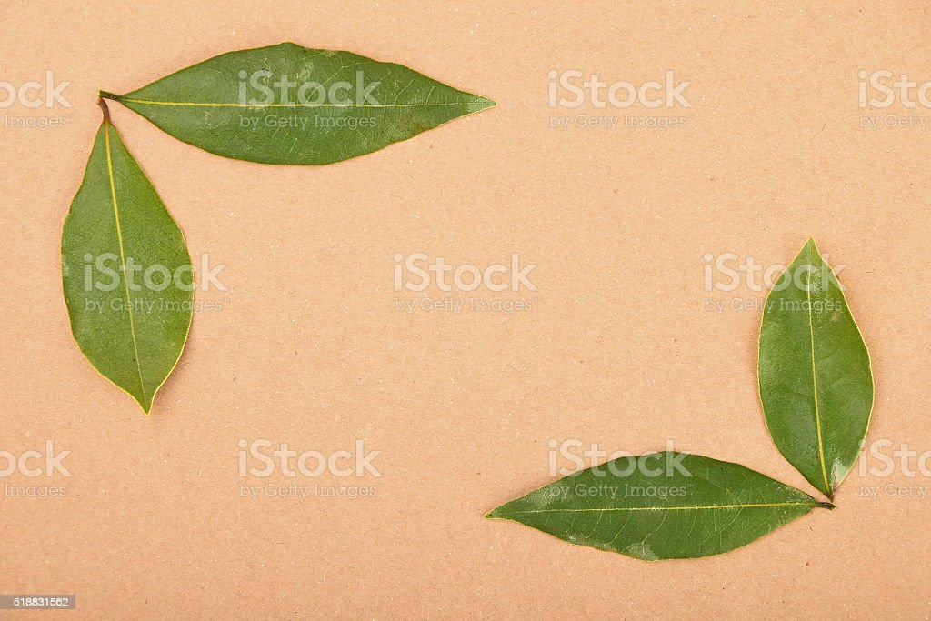 Frame of bay leaves on kraft paper royalty-free stock photo