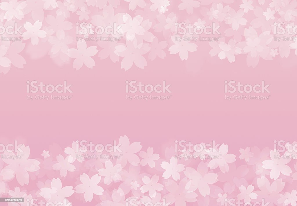 frame of cherry blossom petals stock photo