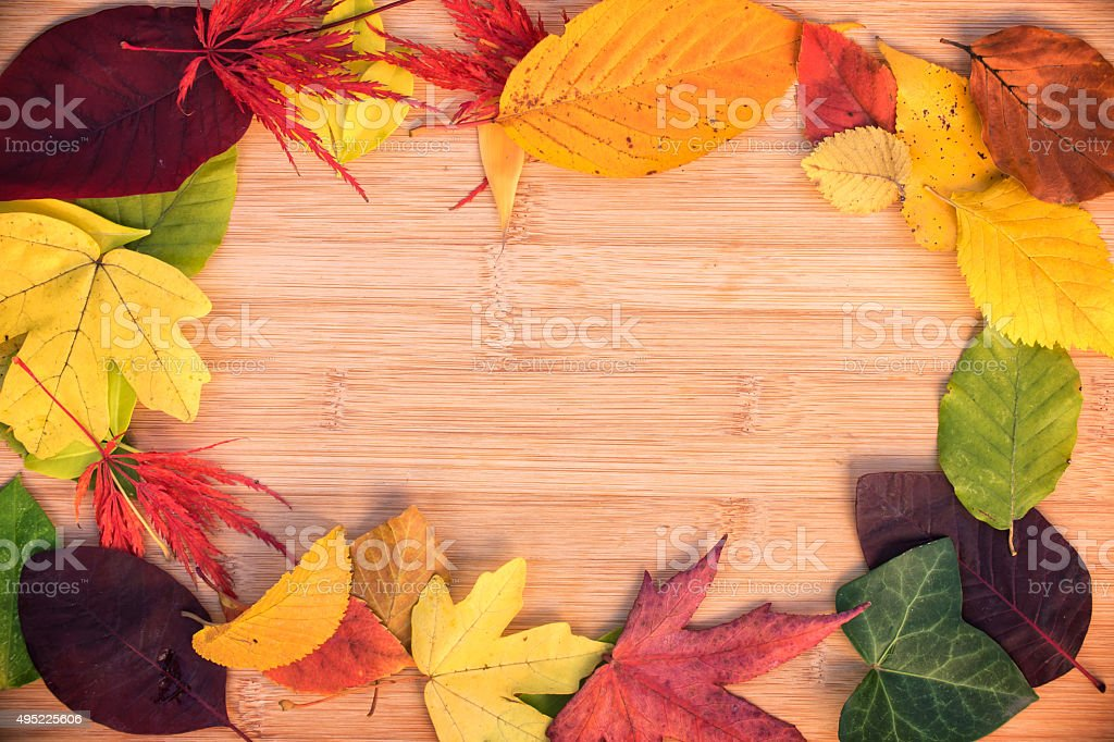 Frame of colorful autumnal leaves, wooden background stock photo