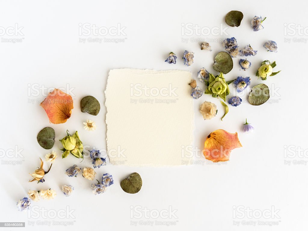 Frame of dry flowers background. Flat lay, top view stock photo