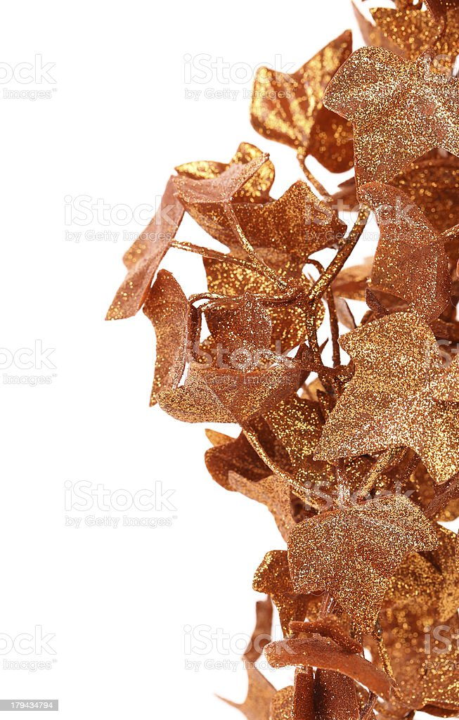 Frame of golden ivy leaves. royalty-free stock photo