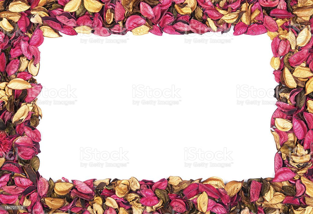 Frame of red flower petals on a white background royalty-free stock photo
