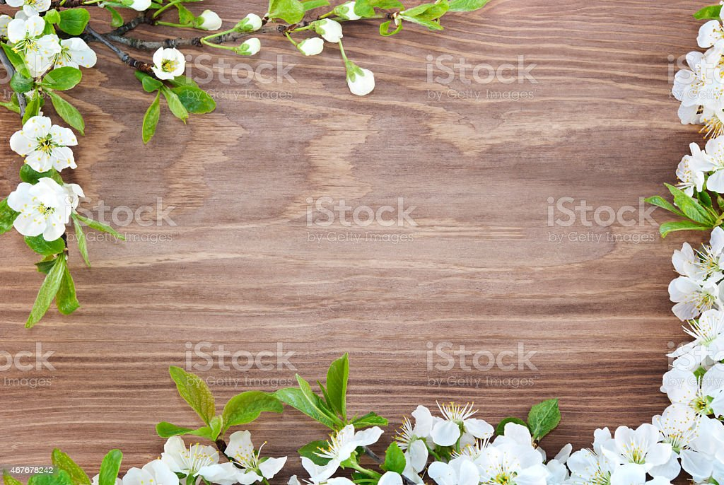 Frame of spring flowers on a wooden background. stock photo