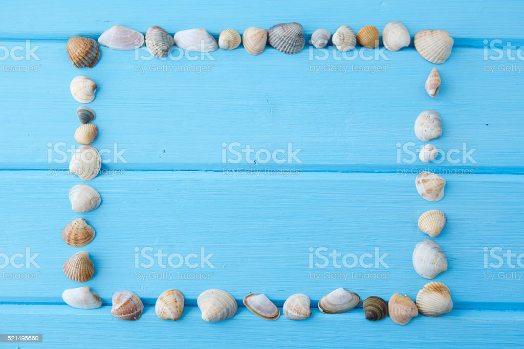 Frame of white sea shells on blue wooden table stock photo