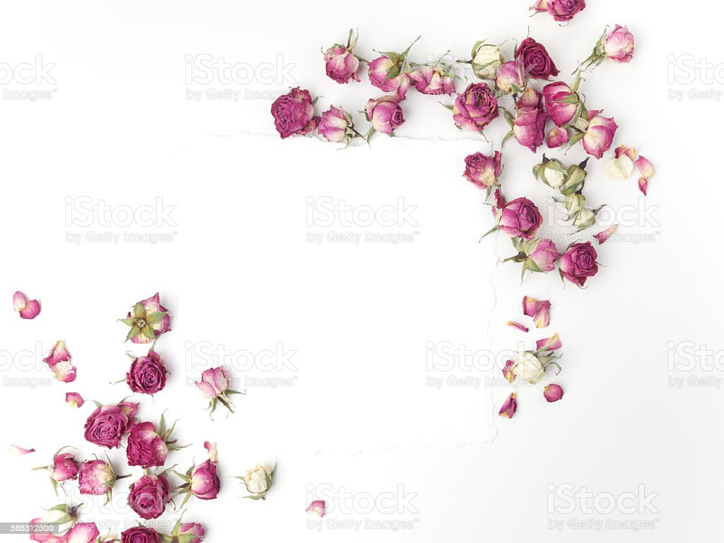Frame with dried pink roses. Top view. Flat lay. stock photo
