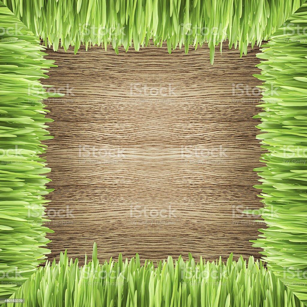 Cadre avec de l'herbe sur le fond en bois photo libre de droits