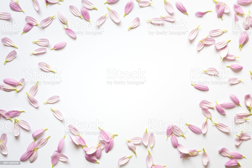 Frame With Pink Petals stock photo