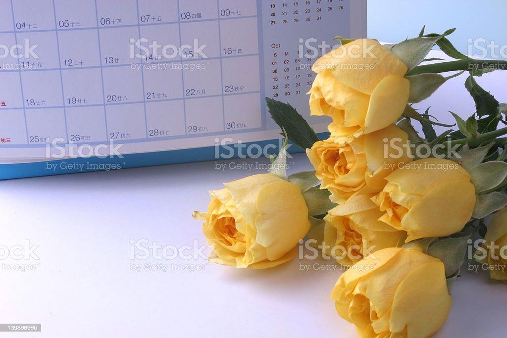 Frame Yellow Rose royalty-free stock photo