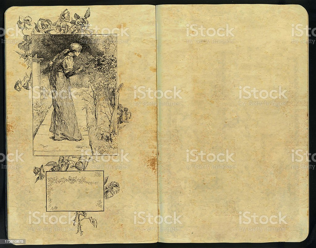 Framed on roses lady Sketch Pad royalty-free stock photo