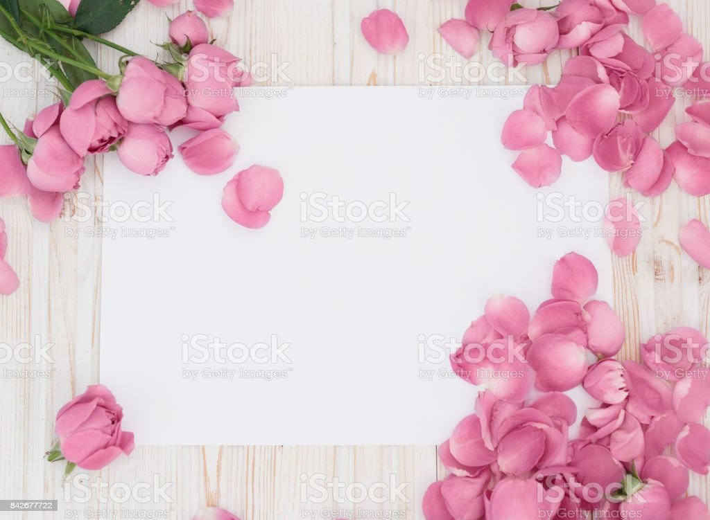 Framework from roses on white background. Flat lay. Top view - stock photo