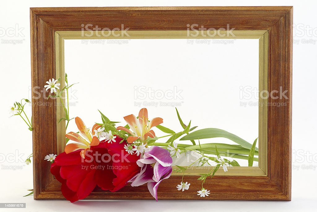 Framework with the flowers royalty-free stock photo