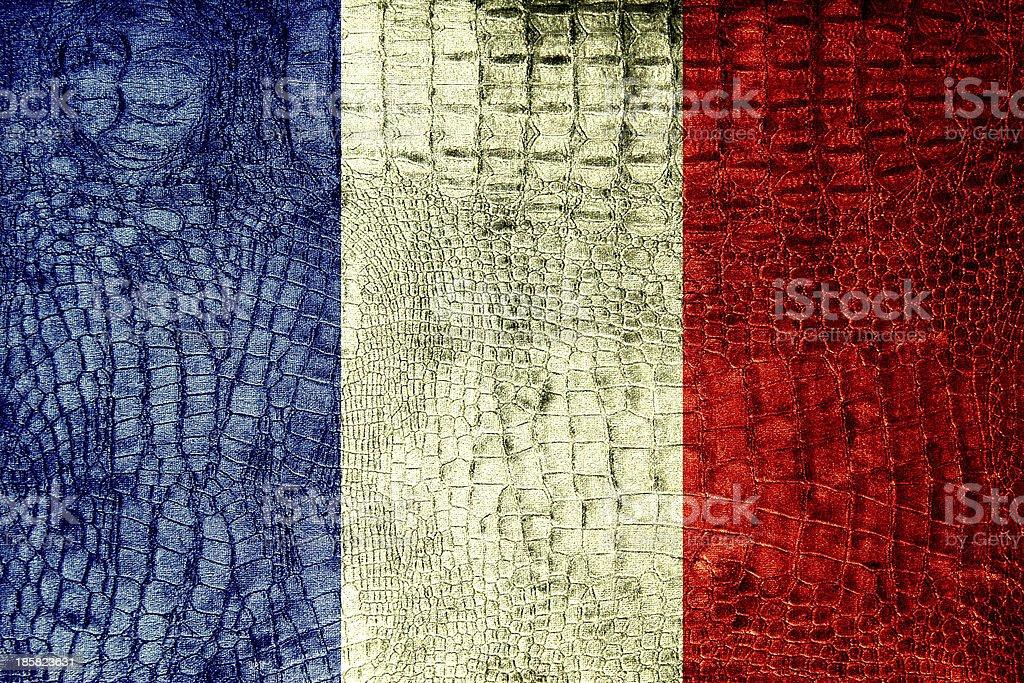 France Flag painted on luxury crocodile texture royalty-free stock photo