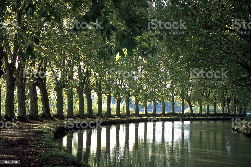 France, Languedoc-Roussillon, Canal du Midi stock photo