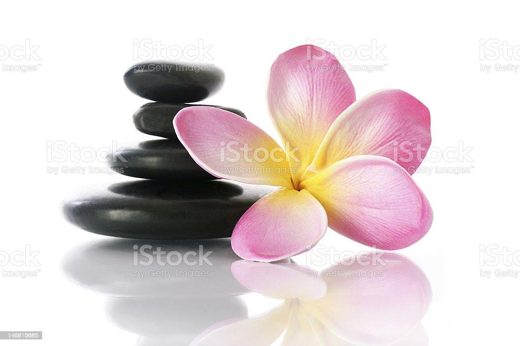 frangipani and pebbles royalty-free stock photo