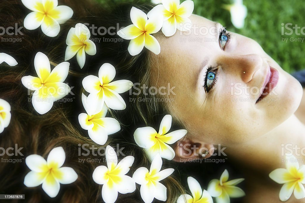 Frangipani Dreams royalty-free stock photo