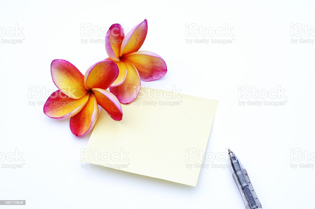 frangipani flower and paper royalty-free stock photo