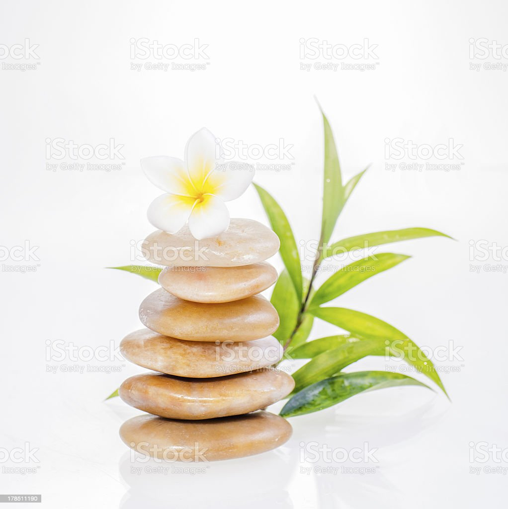 Frangipani flower on yellow river stones and lucky bamboo close-up royalty-free stock photo