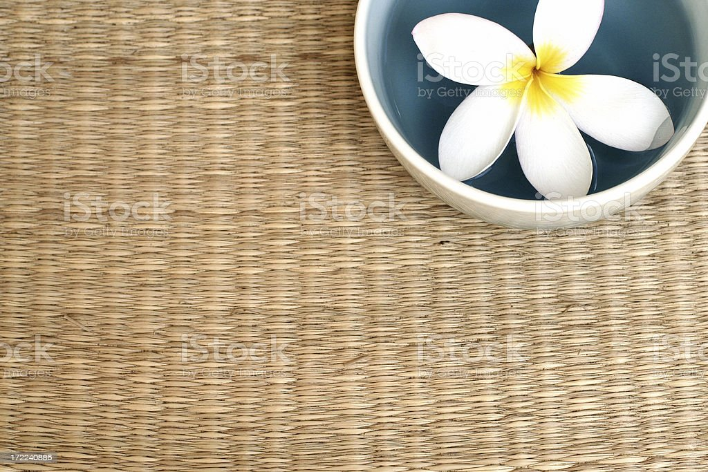 Frangipani in a bowl royalty-free stock photo