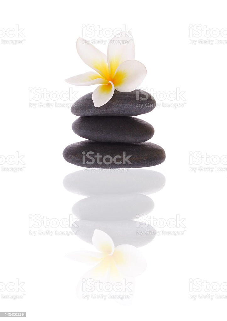 frangipani on stones royalty-free stock photo