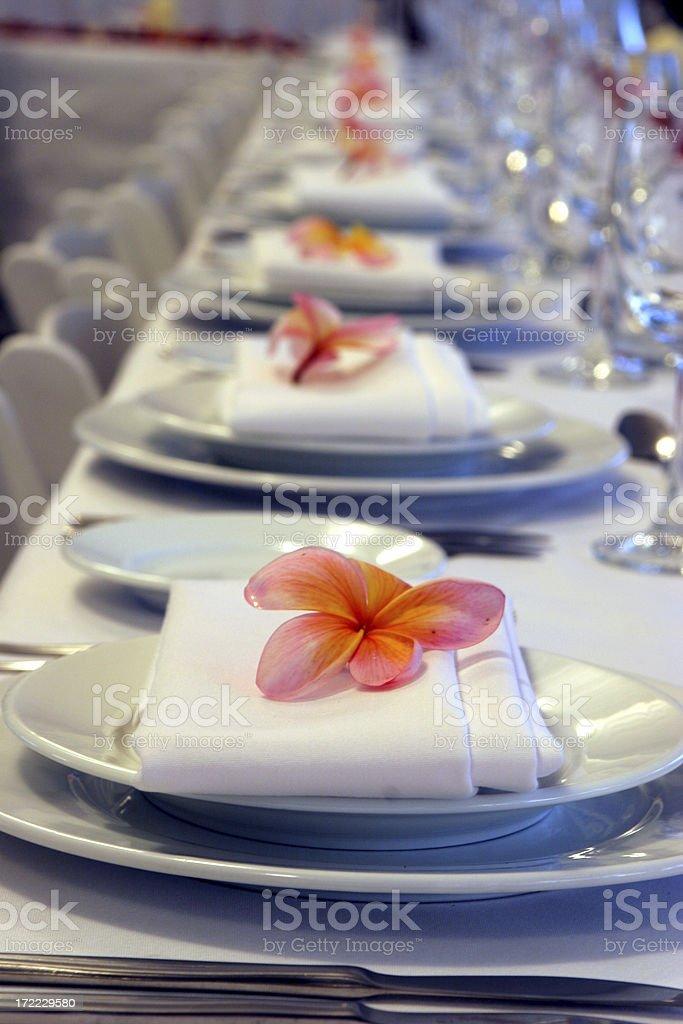 Frangipani Settings royalty-free stock photo