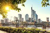 Frankfurt skyline with evening sun