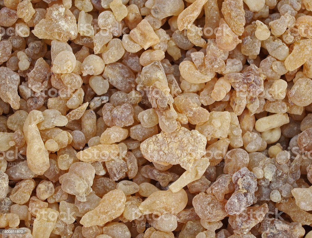 Frankincense resin stock photo