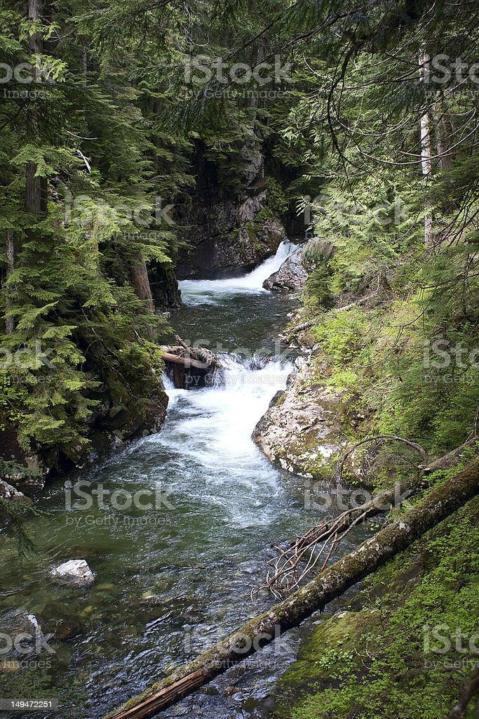 Franklin Falls, Denny Creek, Snoqualmie Forest stock photo